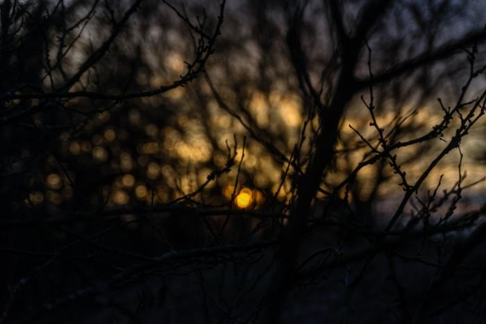 Sunset//Bokeh